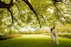 Romantic couple in field 300x200 Stock Photography – Are you on the Buyer's Schedule?