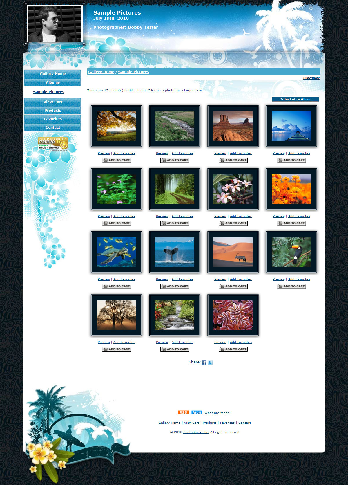 Storefront Windsurfing 160910 2 New Storefront Templates Available!