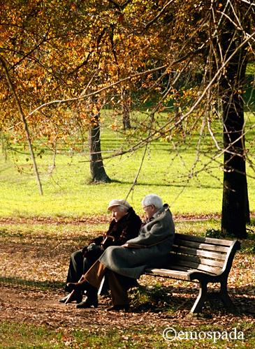 autumn3 7 Fantastic Tips to Capture Autumn Images