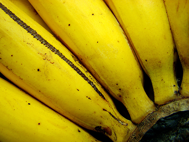 bananas Photographing Fruits and Vegetables