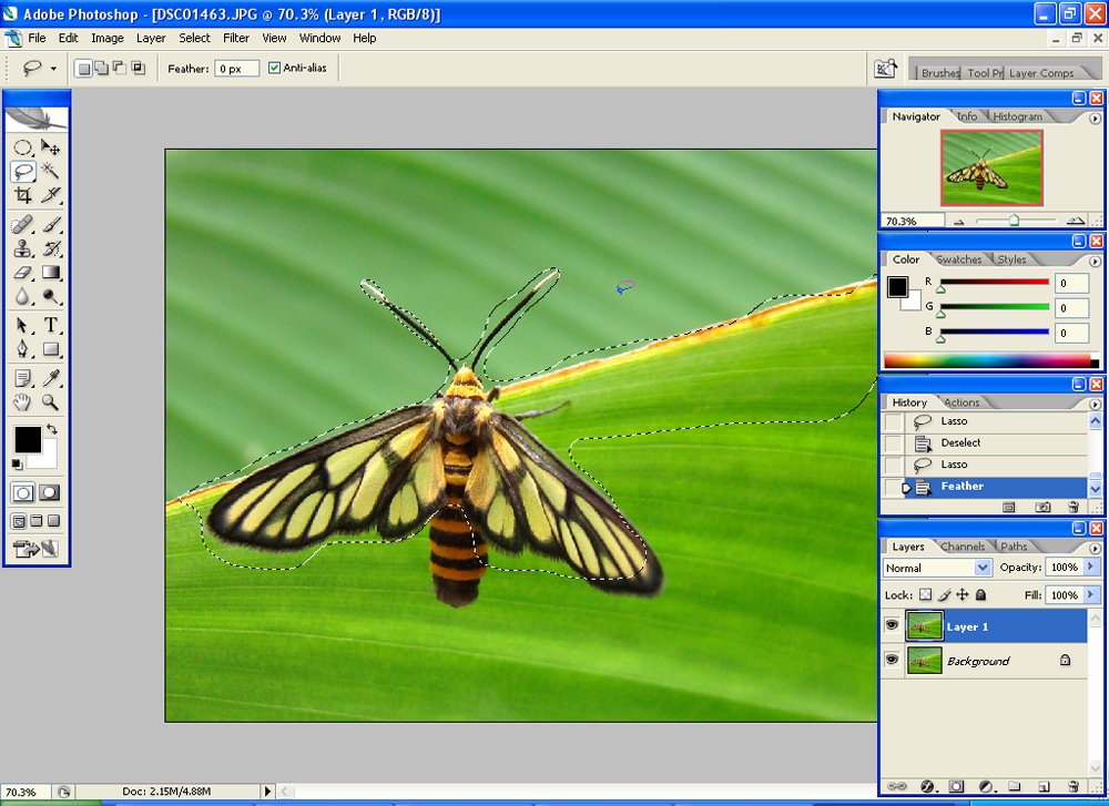 beeselect Sharpening Images and the Unsharp Mask