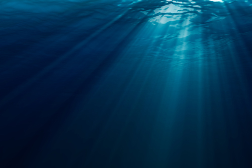 cathedrallight by quentinh Using Ambient Light in Underwater Photography