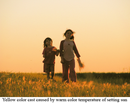 color2 Understanding How Color Temperature Works