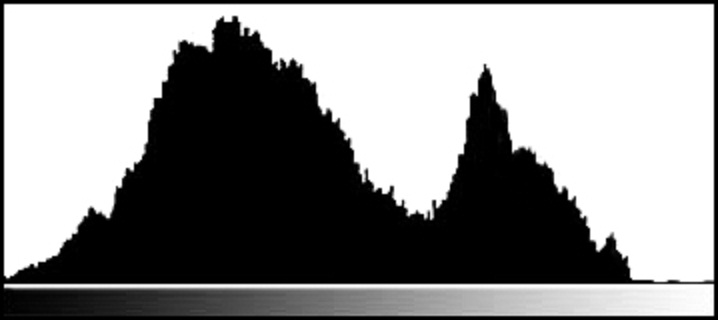 histogram Understanding the Histogram