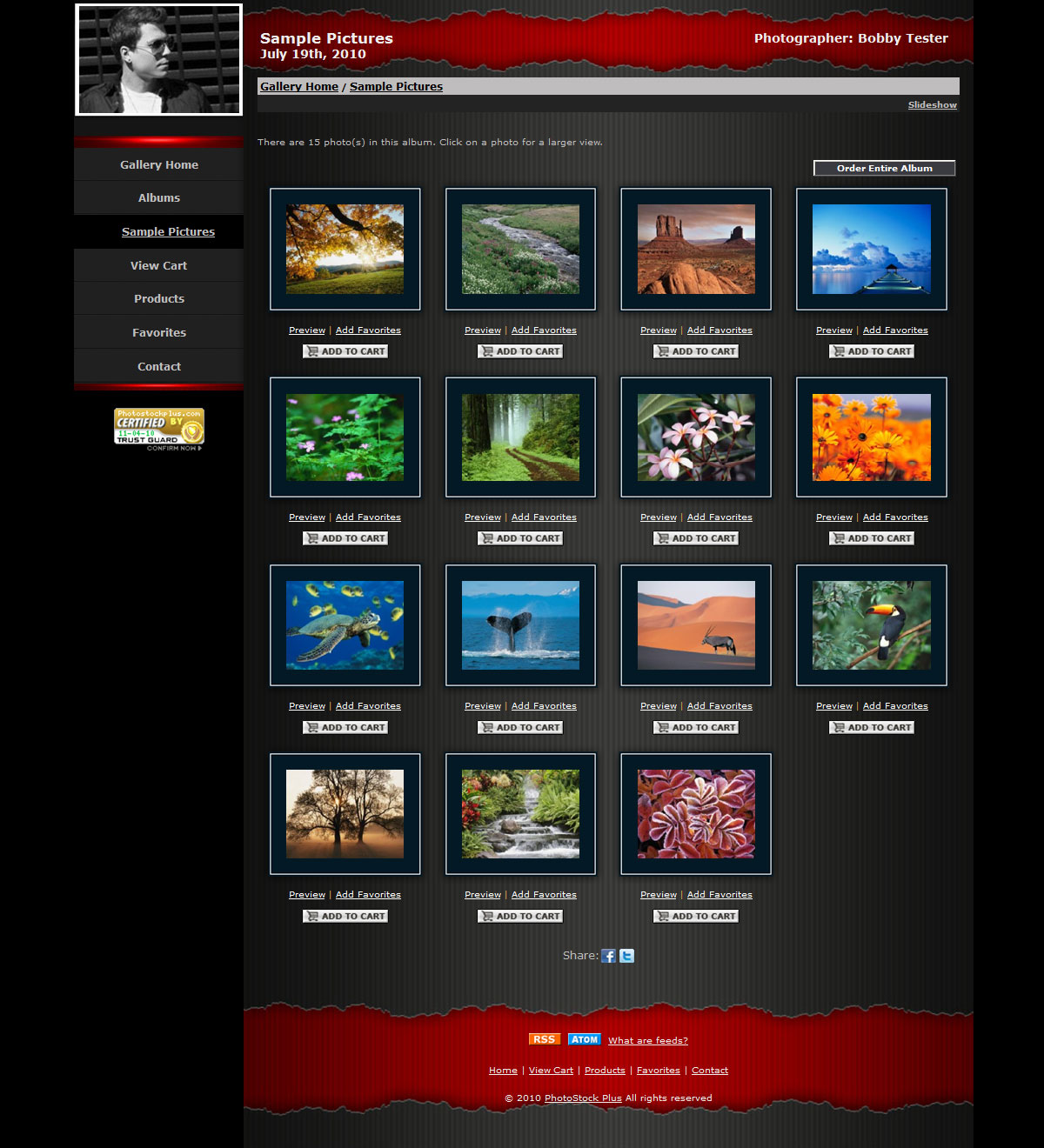 newtemplate tornred 3 New Storefront Templates Available!