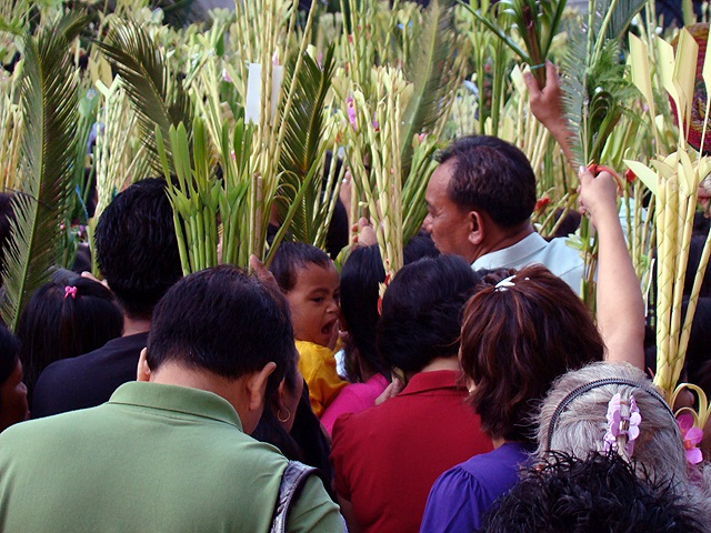 palm sunday Maximizing Foregrounds