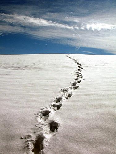 snow1 Photographing Snow Scenes